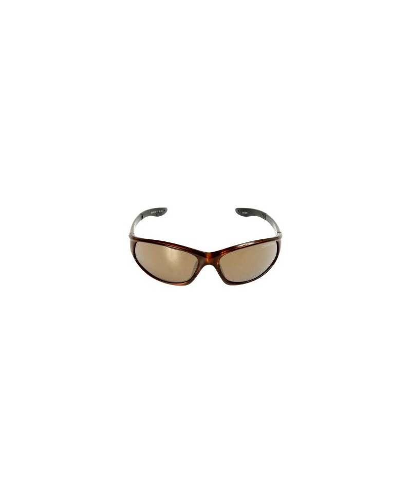Ochelari de soare Wylder